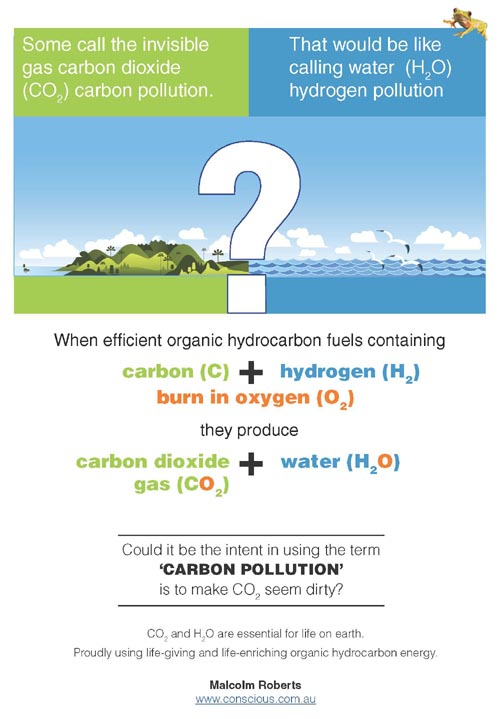 CO2 and H2O are essential for life on earth
